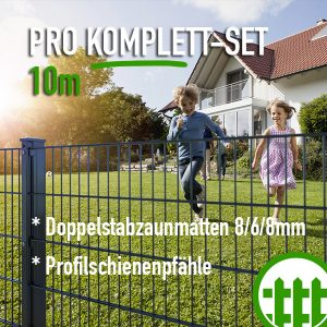 Doppelstabmattenzaun-Set PRO anthrazit 203cm hoch 10m lang Bild 1